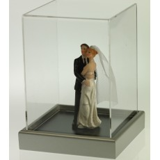 Model Figure Display Case